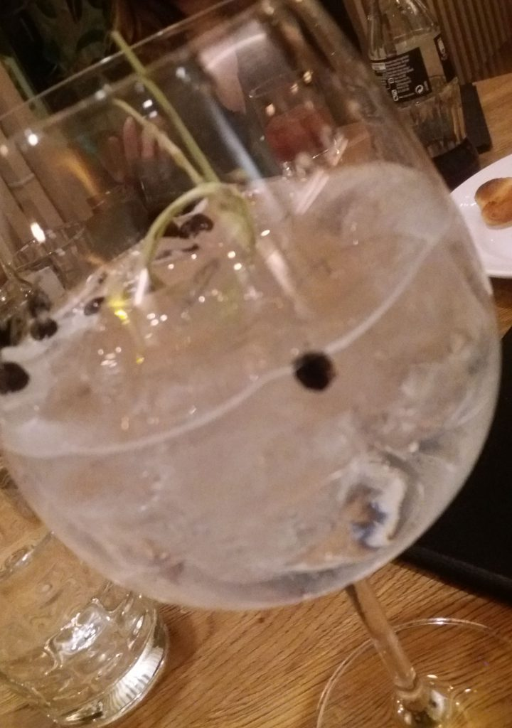 Gin-tonic, az este itala