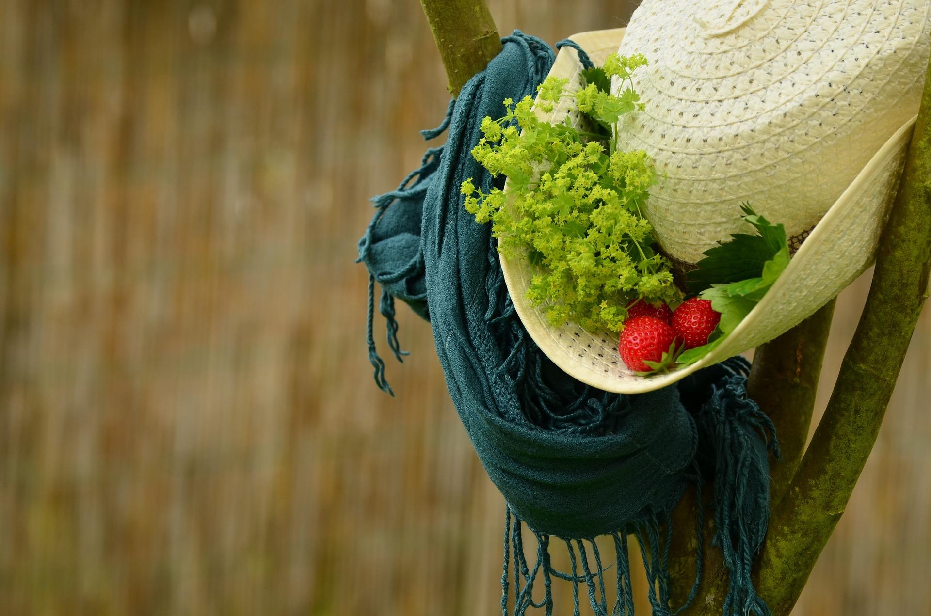 Fókuszban a nő, az ész, a szív, meg a lélek, avagy miről szól a Zöldsaláta blog?
