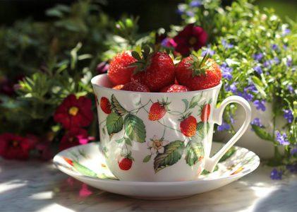 Inspiráló nyári illatok: merülj el a napsütésben!